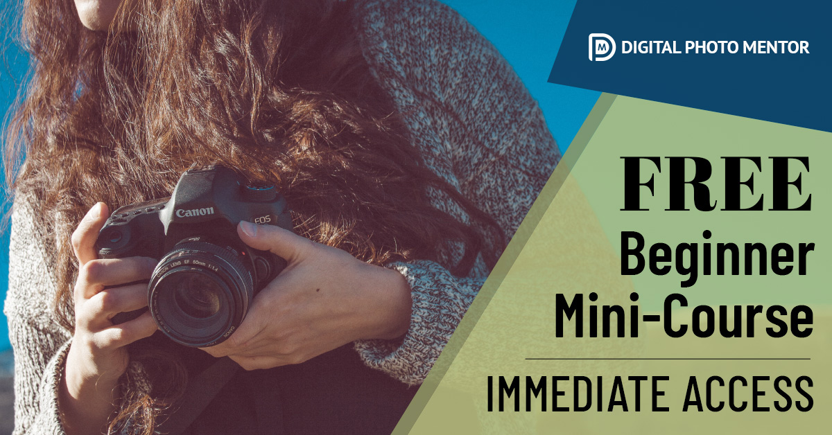 Learn photography basics for beginners course