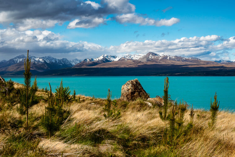 Lake Pukaki in New Zealand with stunning mountains pictured in the distance