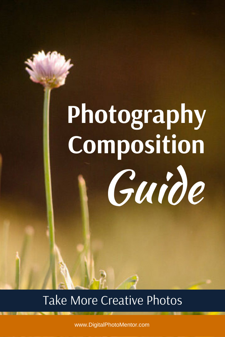 A beginner photography composition guide for learning how to improve photography composition tips and choose a focal point.