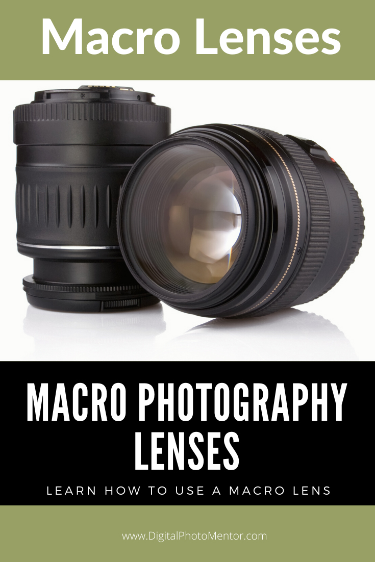 Learn how to use macro photography lenses.  Recommendations on macro lens selection, and tips for how to use macro lenses.