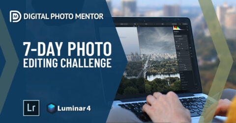 7 day photo editing photography challenge for beginners