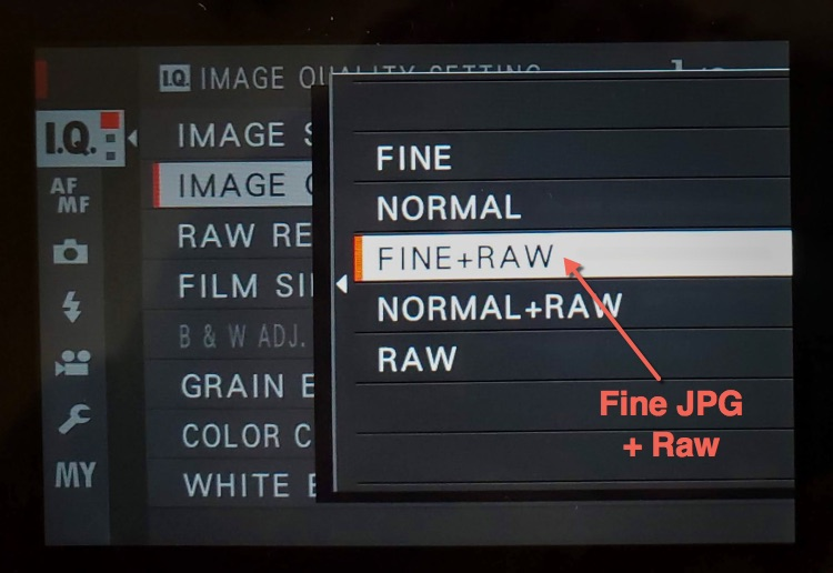 image quality setting shown with both fine jpg and raw files selected