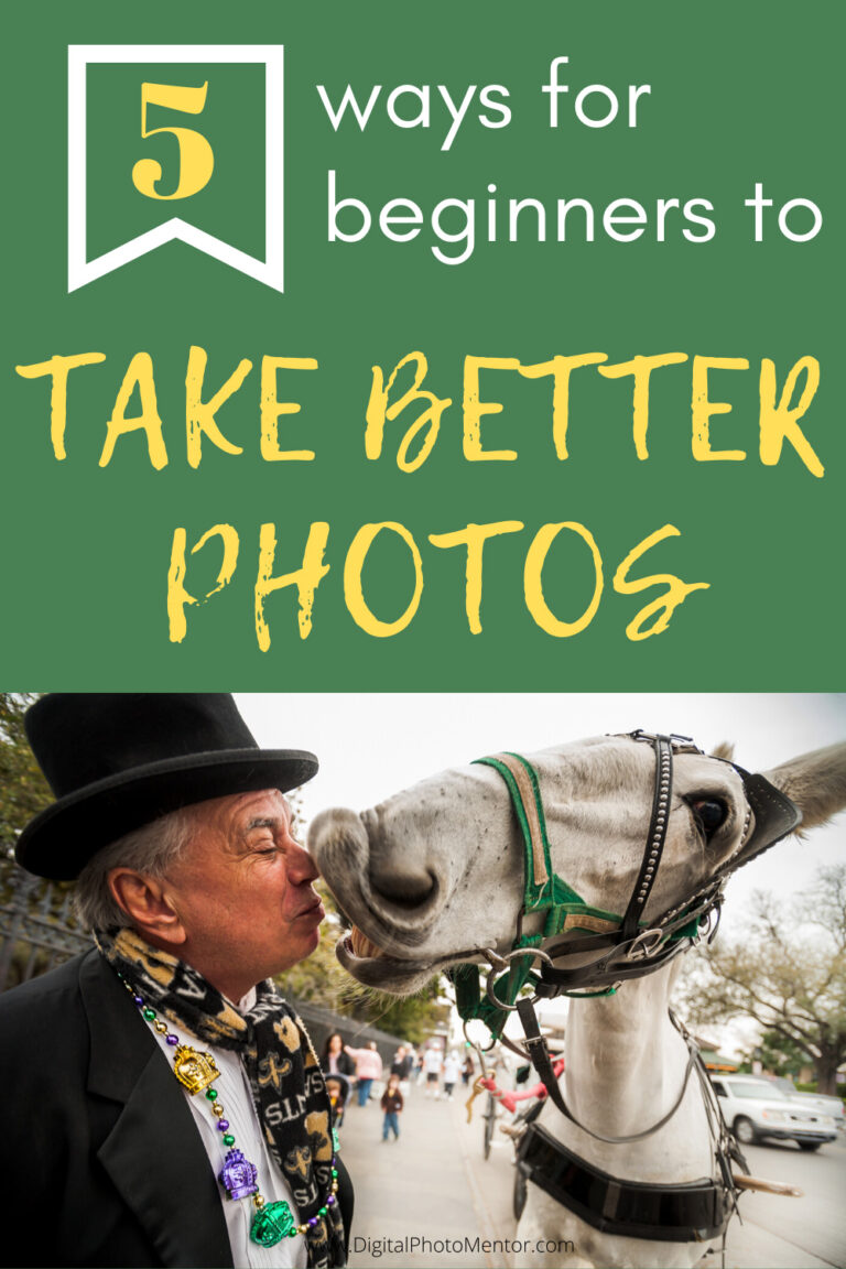 beginner photography tips for how to take better photos