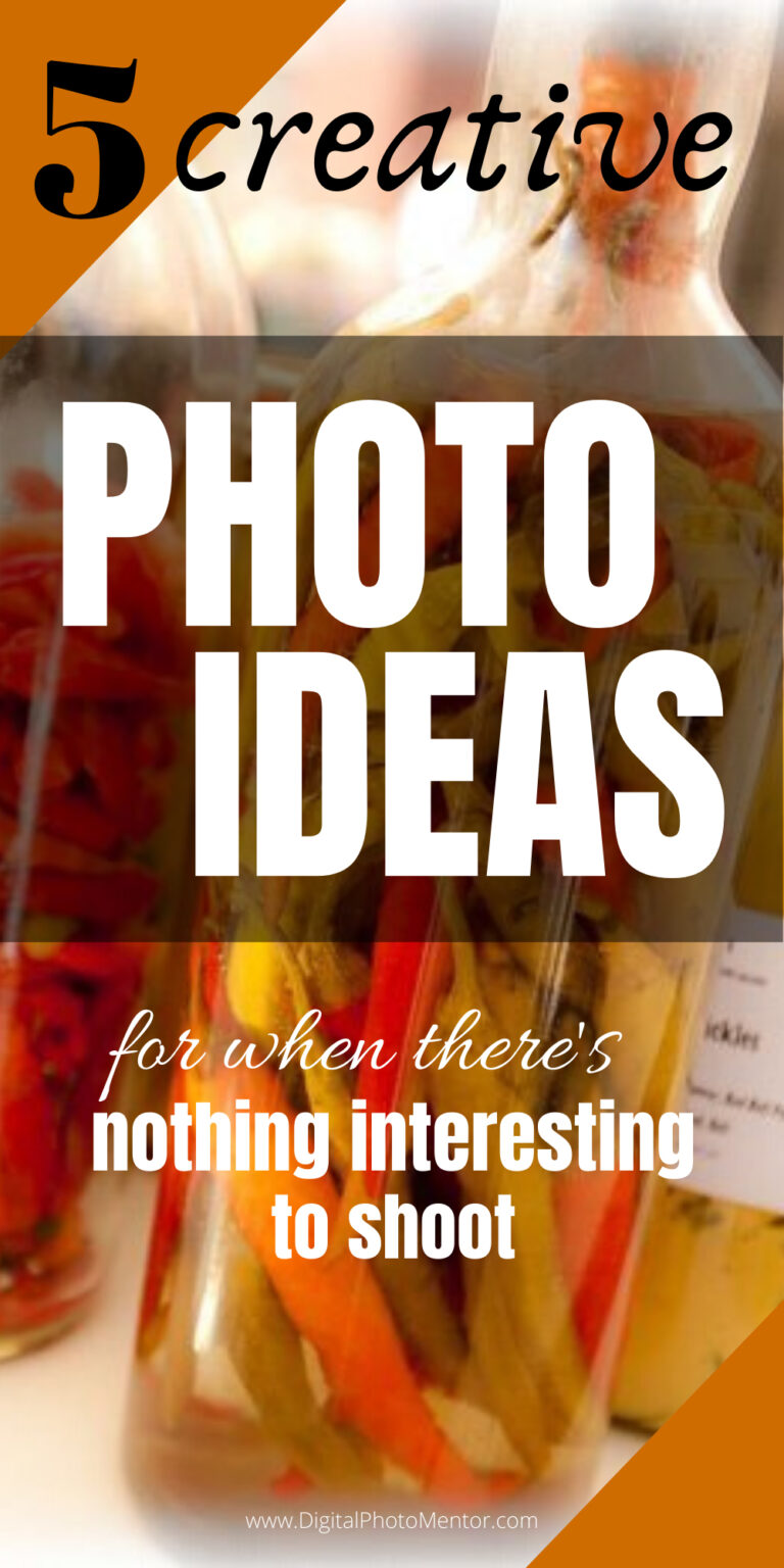 photo ideas inspiration and tips
