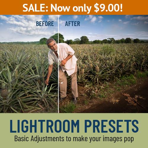 lightroom presets on sale