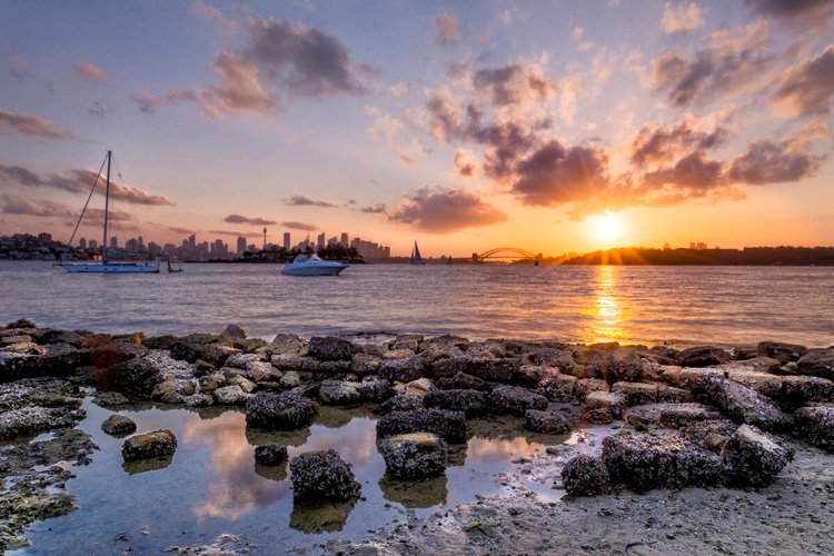 the setting sun lights up this wide angle landscape photo showing a harbour with boats and city skyline for golden hour