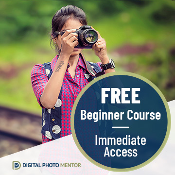 free beginner photography course