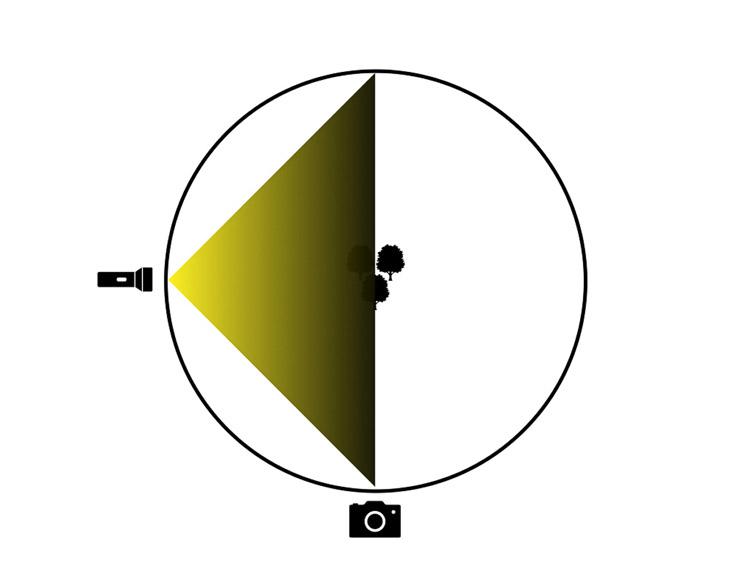 lighting diagram showing light source on camera left