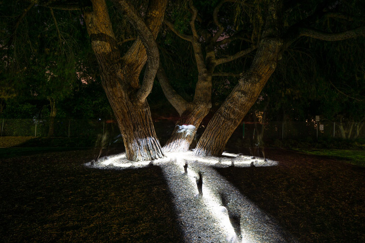 creative light painting photo created by walking through the scene with flashlight