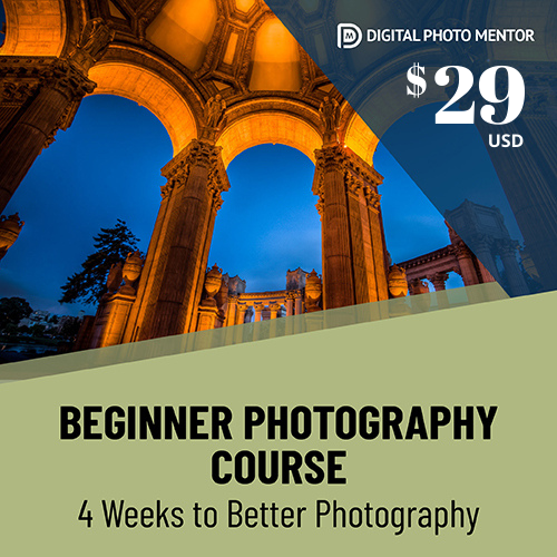 Beginner Photography Course 4 weeks to better photography