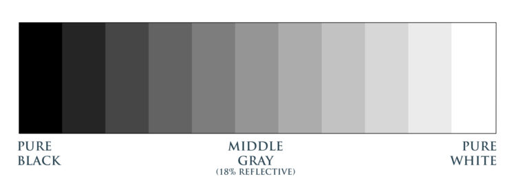 greyscale image from pure black to pure white, including middle gray