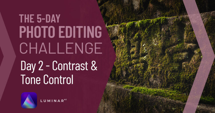 Photo Editing Challenge Day 2 – Contrast and Tone Control