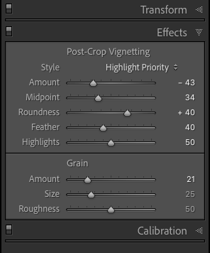 Lightroom adjustments panel showing how to add grain effect in post processing