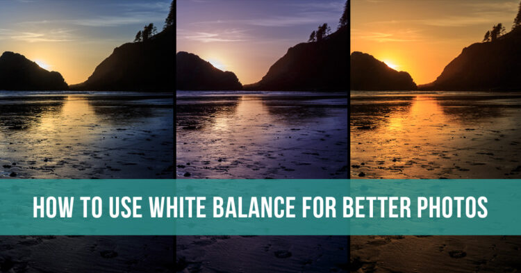 how to use camera white balance to improve your photos