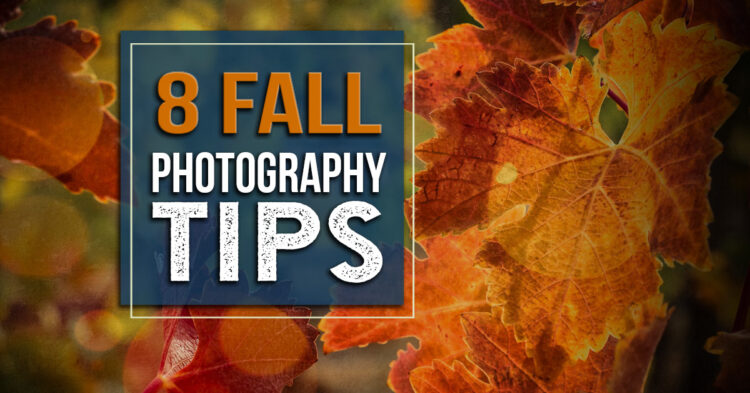 8 Tips for Capturing Spectacular Fall Photos This Season